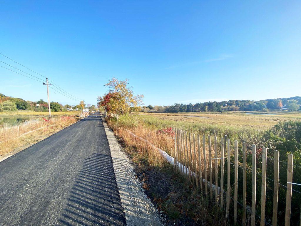 Paved trail through a marsh.
