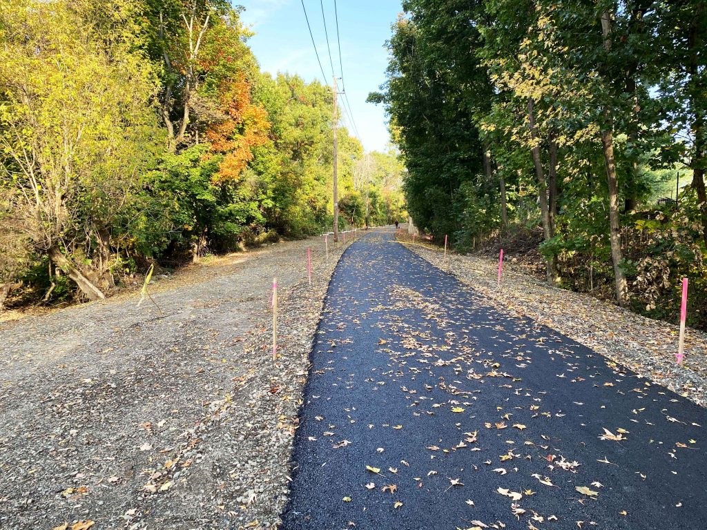 A paved trail in the woods.