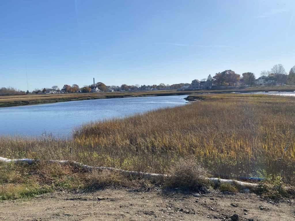 The salt marsh in Lynn.