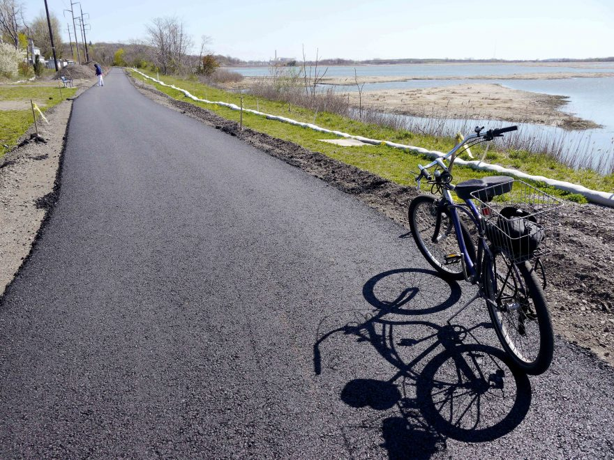A bike parked on the paved trail next to the marsh.
